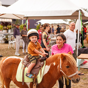 Child siting on horse at community event